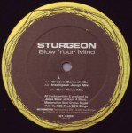 Sturgeon - Blow your mind